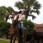 Hier war das Pferd noch brav (dann ging's öfter durch)