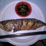 Der Fisch